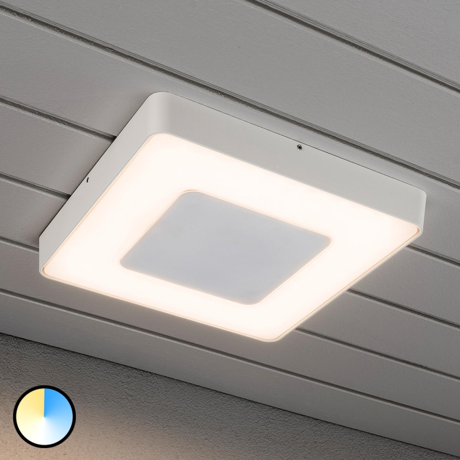 Taklamper utendørs, også med LED | Lampegiganten.no